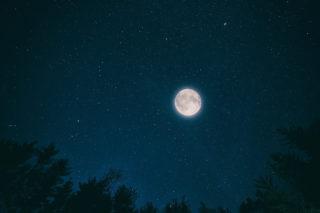 【画像有】月の近くにある明るい星は一体何?